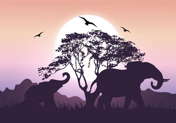 Elephant Sunset Silhouette