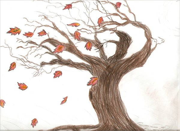 Fall Leaf Drawing