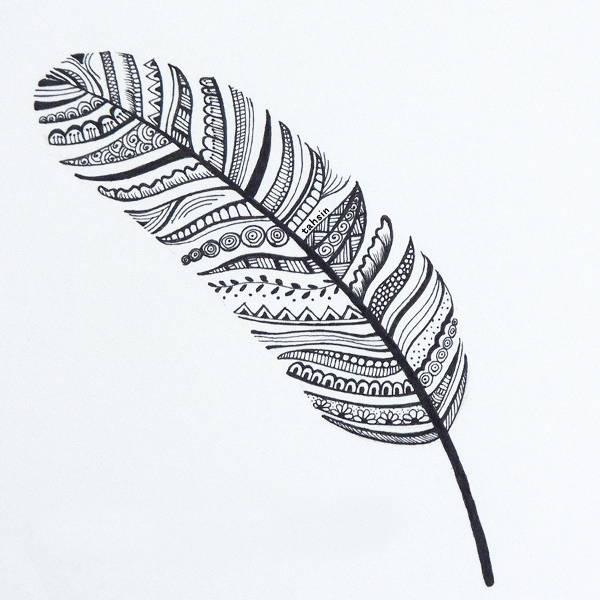 Line Art Feather : Feather drawings jpg download