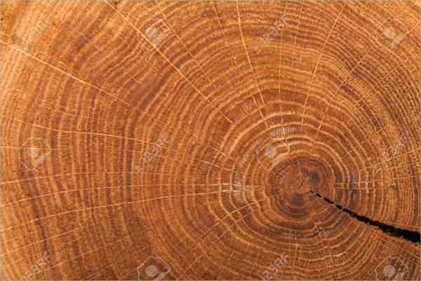 Flat Tree Ring Texture
