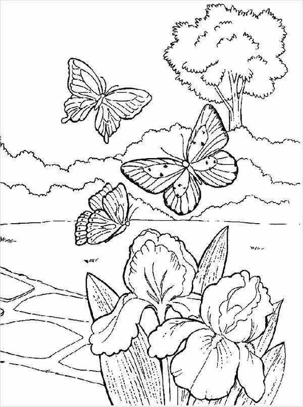 Flowers & Butterfly Coloring Page