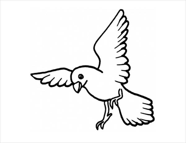 flying crow coloring page 20 bird coloring pages jpg ai illustrator download