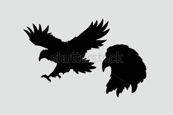 Flying Eagle Silhouette