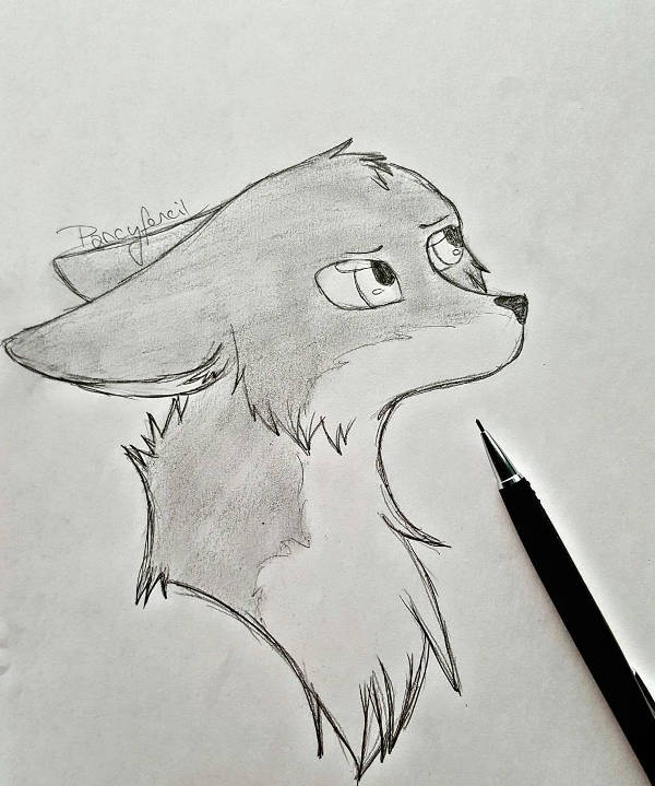 Fox Cartoon Drawing