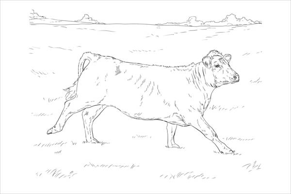 Free Animal Coloring Page