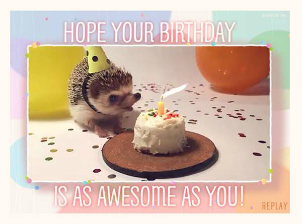 Free Funny Animated Birthday Card