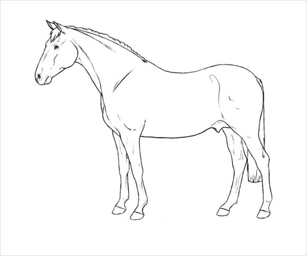 Free Horse Coloring Page