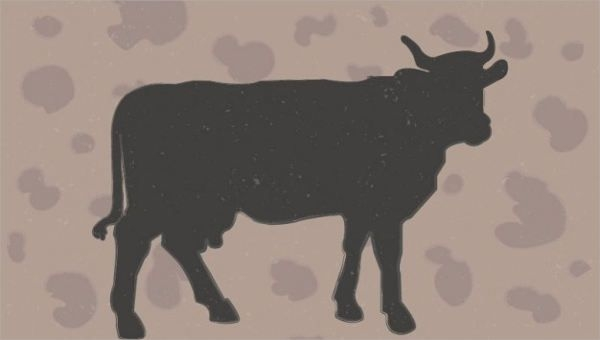 Free Vector Cow Silhouette