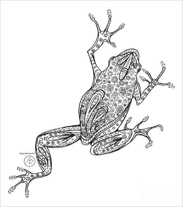 Frog Art Drawing