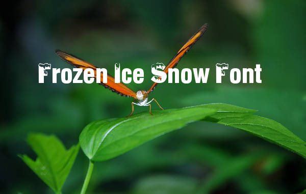 Frozen Ice Snow Font