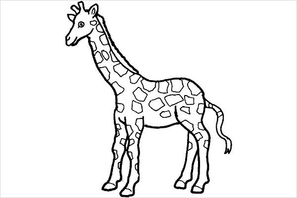 Giraffe Animal Coloring Page