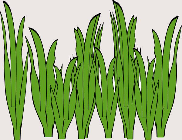 Grass Cartoon Clipart