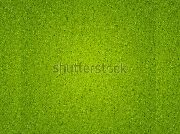 grass background texture - photo #12