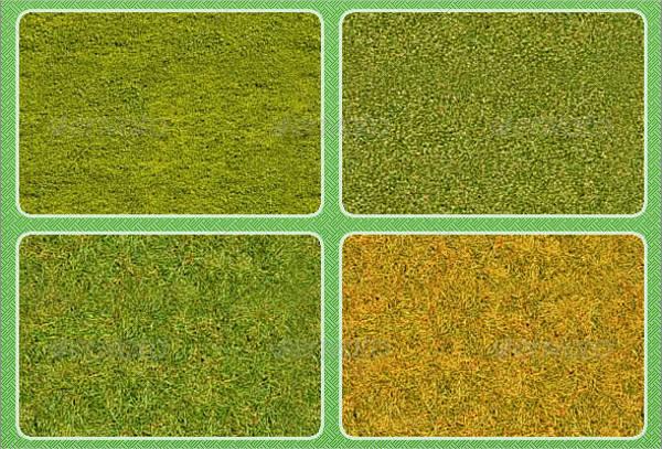 Grass Texture Photoshop