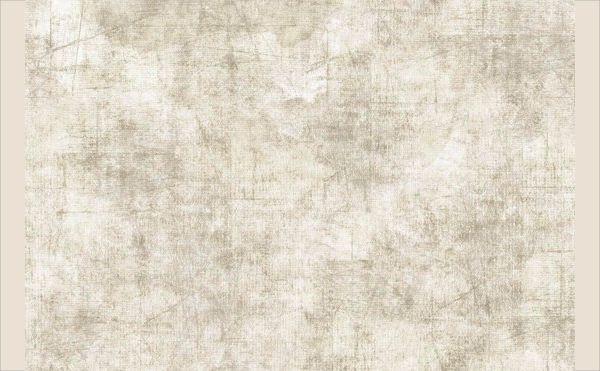 Gray Parchment Texture