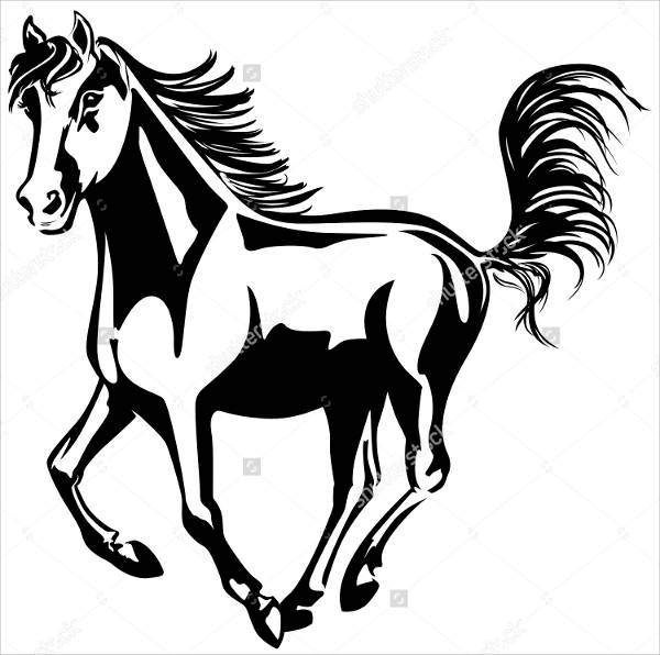 Horse Black and White Drawing