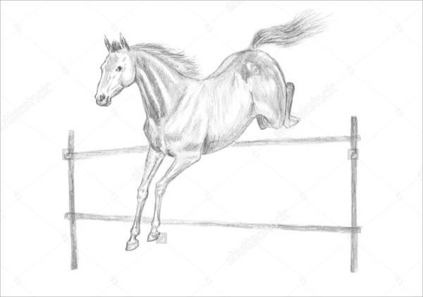 Horse Jumping Drawing