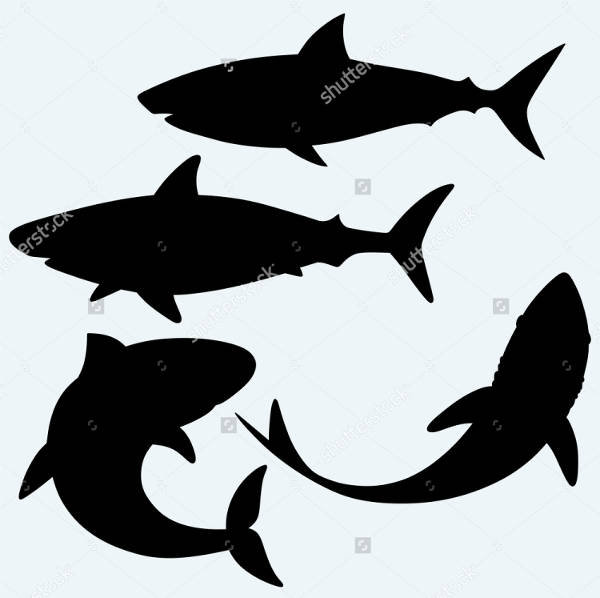 Isolated Shark Silhouette
