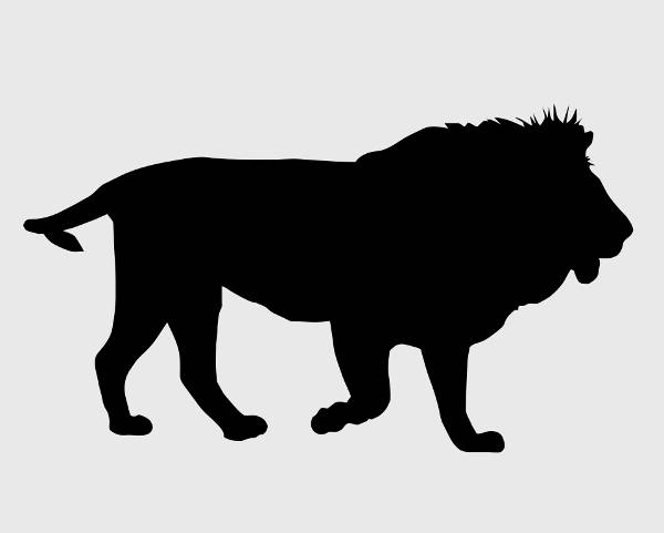 Lion Black Silhouette