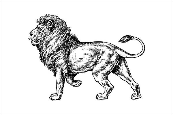 Lion Clipart Free Vector