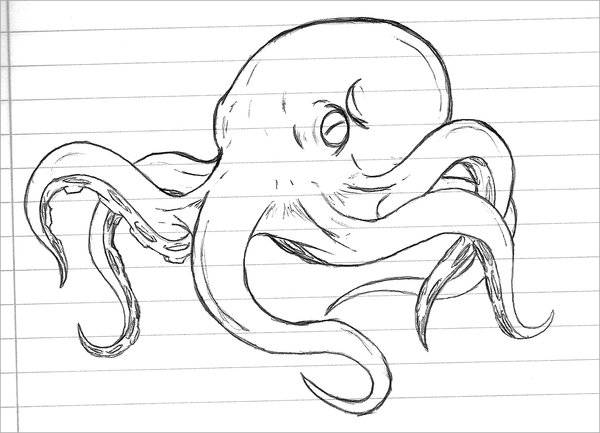 Octopus Tattoo Drawing
