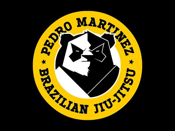 Panda Logo Illustration