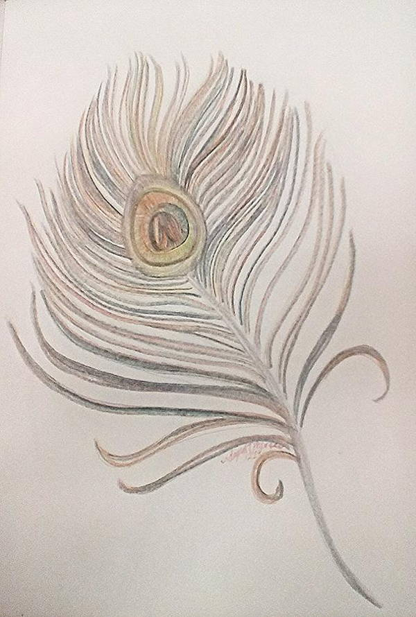 10  feather drawings