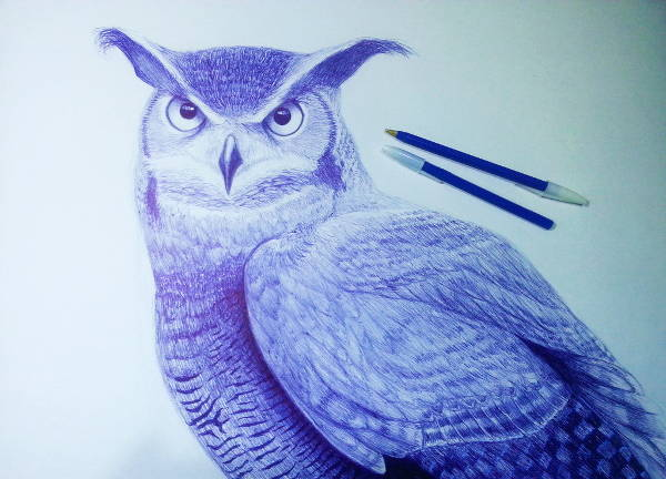 Pen Realistic Drawing