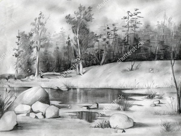 Pencil Drawing of Nature