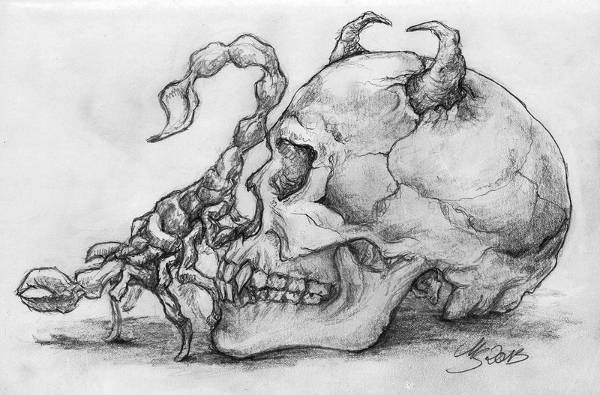 pretty skull drawing