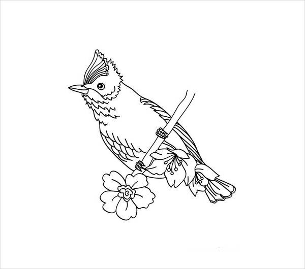 Printable Bird Coloring Page