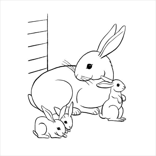 Bunny Realistic Coloring Pages