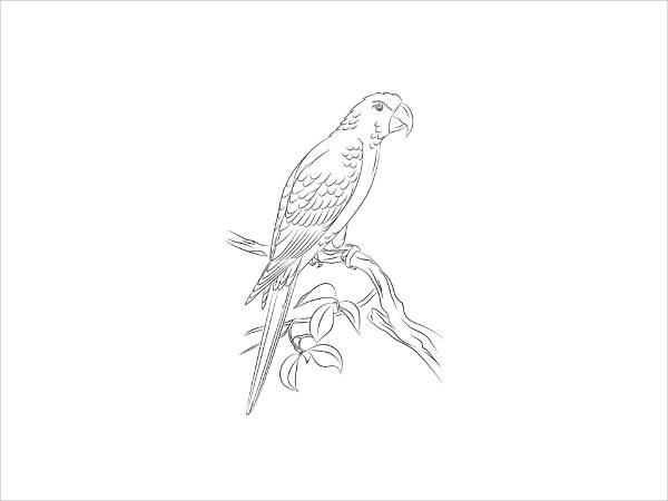 Printable Cool Bird Coloring Page
