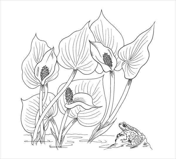 Printable Flowers Coloring Page