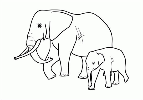 Realistic Animal Coloring Page