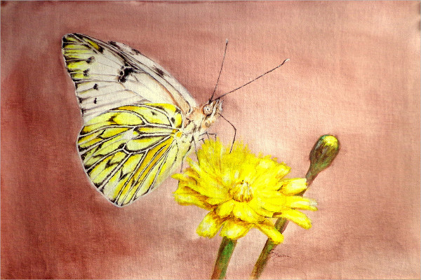 Realistic Butterfly Painting