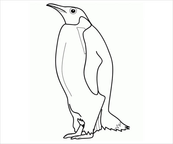 Realistic Penguin Coloring Page