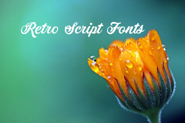 Retro Script Fonts