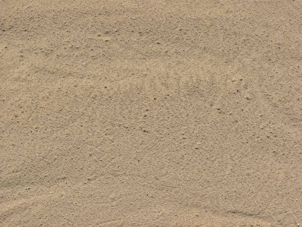 Rocky Sand Texture