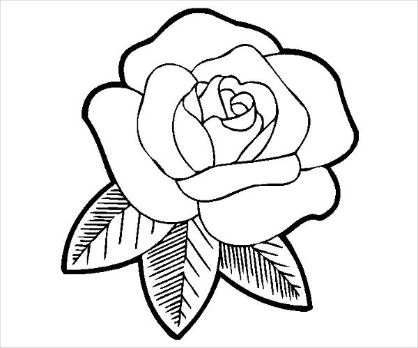 photograph regarding Rose Printable identify 9+ Rose Coloring Web pages - JPG, Ai Illustrator Obtain