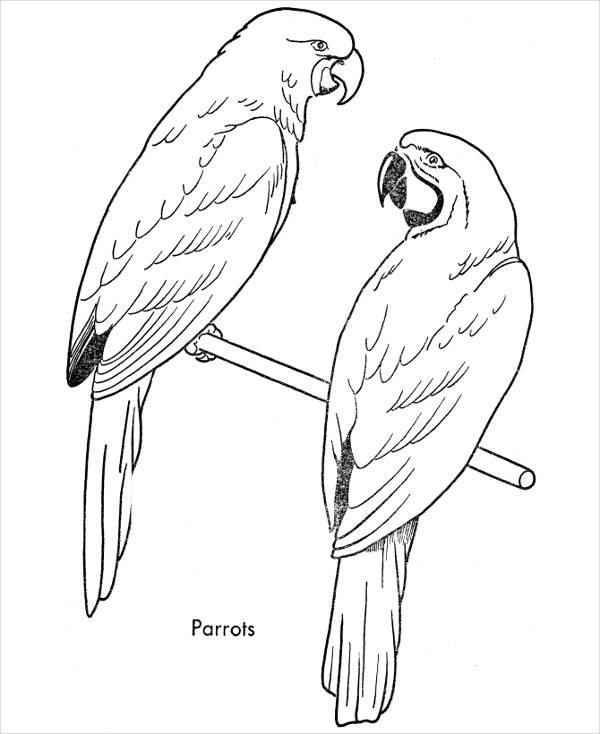 Simple Bird Coloring Page