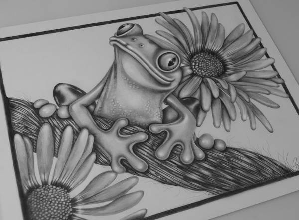 Free 9 Frog Drawings In Ai