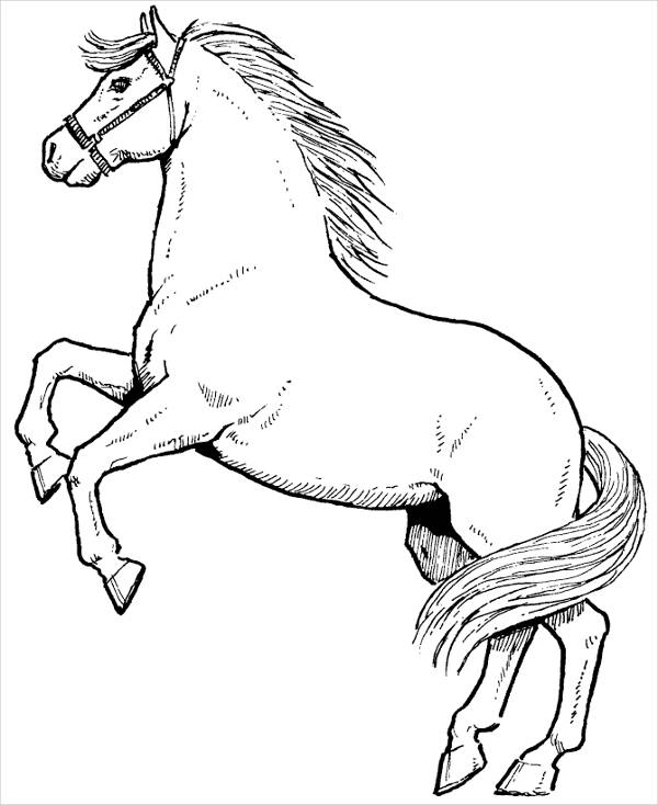 Simple Horse Coloring Page