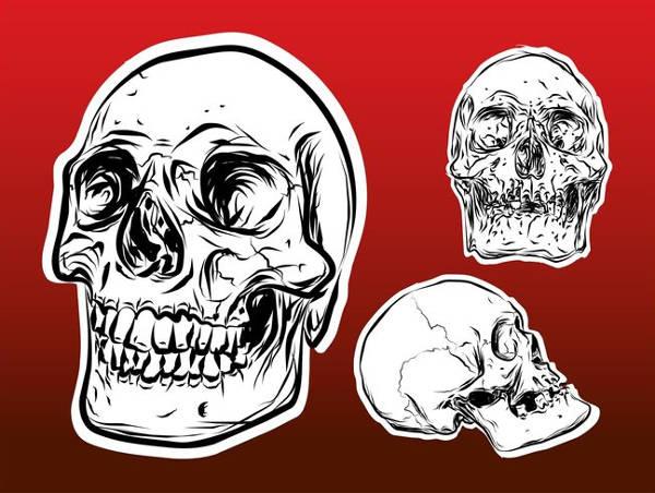 Skull Outline Vector