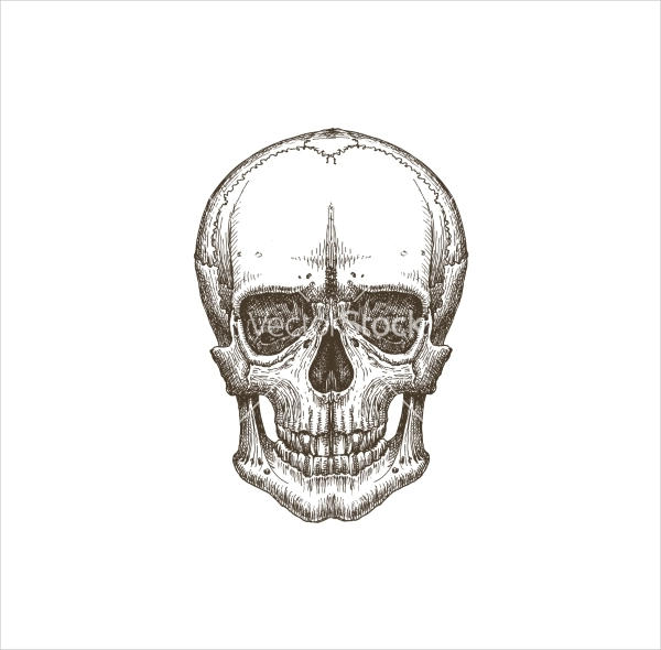 Death Skull Logo Design