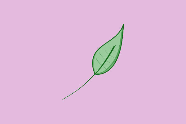 Small Leaf Clip Art
