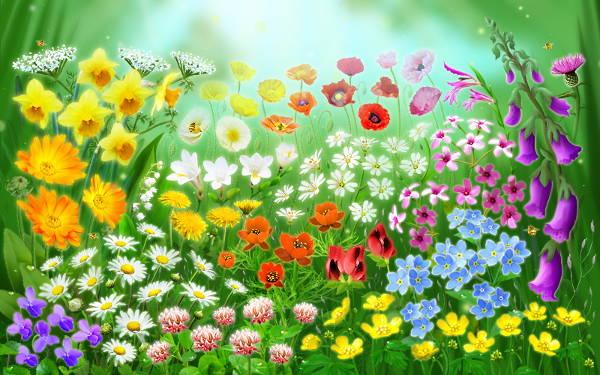 Spring Animated Image
