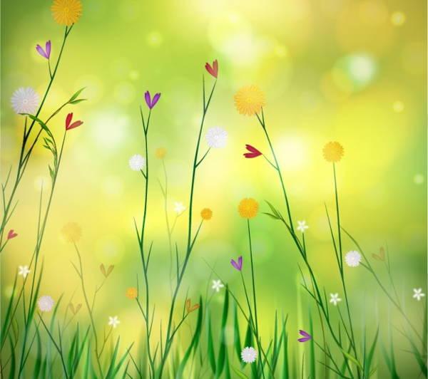 Spring Background Image