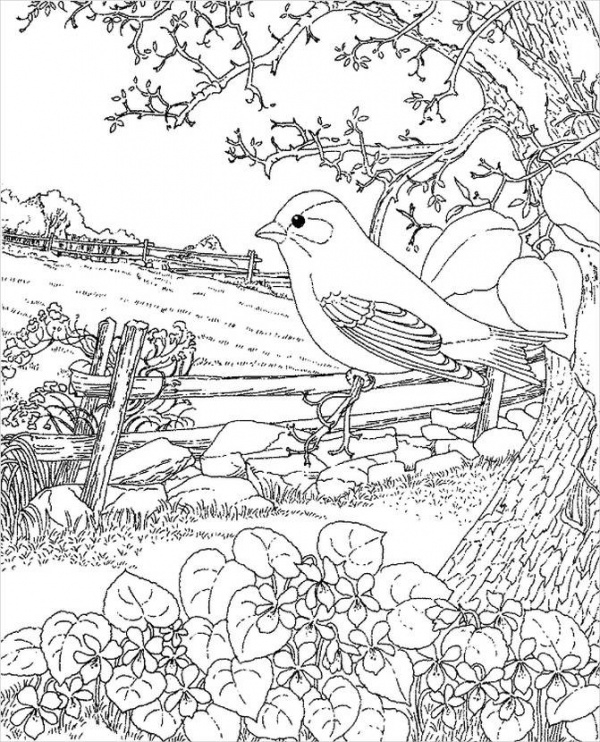 spring coloring page for adults1