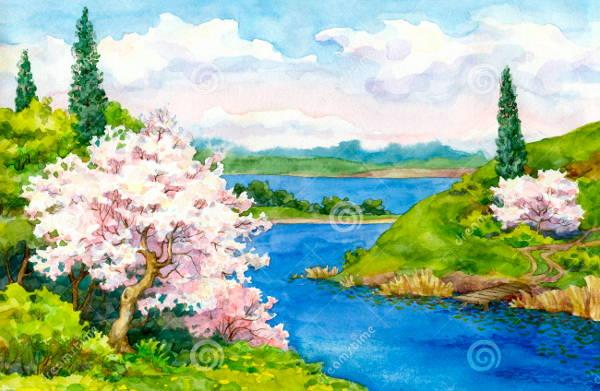 Spring Landscape Image